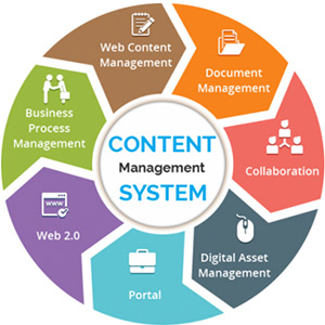 content management system in india